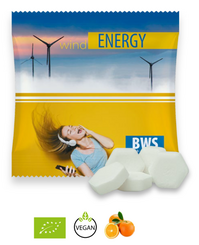 Bio-Mints Mini-Tüte Orange Drops 5g